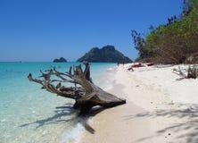 Krabi海滩和海岛泰国 免版税库存图片
