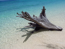 Krabi Beach, Thailand Royalty Free Stock Image