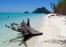 Krabi islands and sea, Thailand Stock Photography