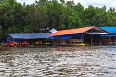 Krabi landskap, Thailand Kayaking station Mangrovedjungel Arkivbild