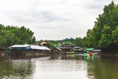 Krabi landskap, Thailand Kayaking station Mangrovedjungel Arkivfoton