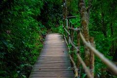 Krabi, sentier piéton de la Thaïlande dans les montagnes Images stock