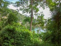 Krabi Tailândia através da selva à praia isolado tropical da praia de Centara perto da cidade de Krabi imagem de stock royalty free