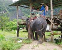 KRABI, TAILÂNDIA - 28 DE OUTUBRO DE 2013: Os turistas vão nos elefantes que trekking Foto de Stock