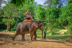 Tourists riding an elephant in Thailand Royalty Free Stock Photography