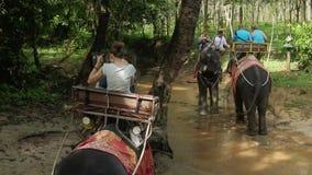 KRABI, THAILAND - DECEMBER 22, 2014: People riding elephants. KRABI, THAILAND - DECEMBER 22, 2014 People riding elephants in jungle stock video