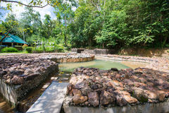 Krabi, Thailand - October 10, 2016 :hot springs pool at hot spri Royalty Free Stock Photo