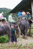 KRABI, THAILAND - OCTOBER 28, 2013: Tourists on elephants trekking. Royalty Free Stock Photos