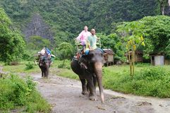 KRABI, THAILAND - OCTOBER 28, 2013: Tourists on elephants trekking. Stock Photography