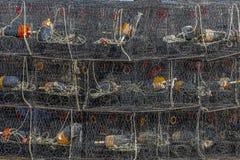 Krabpotten Royalty-vrije Stock Afbeeldingen