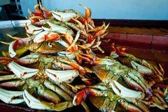 Kraby przy molem 52 Zdjęcia Royalty Free