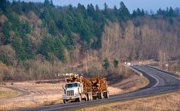 Krachtige semi vrachtwagen met een aanhangwagen dragende logboeken Royalty-vrije Stock Afbeeldingen