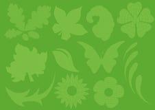 kraciaste liści, ilustracja wektor