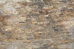 Kraciaste ziemi powierzchni tekstury Zdjęcia Royalty Free
