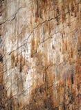 Kraciaste ziemi powierzchni tekstury Obrazy Royalty Free