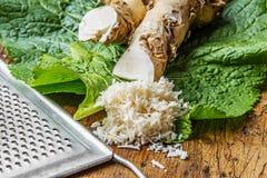 Kraciasty horseradish Fotografia Royalty Free