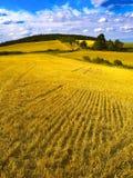 Krańcowy panoramiczny krajobraz w Sudety pasmie, Polska Fotografia Royalty Free