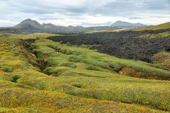 Krafla volcanic area Royalty Free Stock Photo