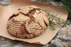 Био весь хлеб зерна стоковое фото rf