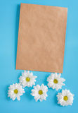 Kraft envelope and white chrysanthemums on a blue background.. Kraft envelope and white chrysanthemums on a blue background. Copy space and room for the stock photo