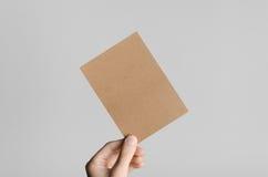 Kraft A6 Flyer / Postcard / Invitation Mock-Up. Male hands holding kraft flyers on a gray background Stock Photos