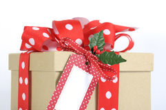 Kraft gift box with red polka dot ribbon Stock Image