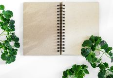 Kraft paper spiral notebook with green leaves as frame Royalty Free Stock Photo