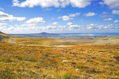 Kraftfull Co Donegal landskap, Irland royaltyfri foto