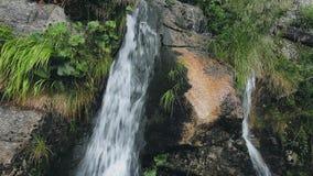 Kraftig bergkaskadvattenfall i skogen arkivfilmer