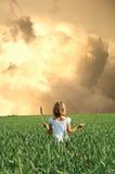kraftig storm Arkivbilder
