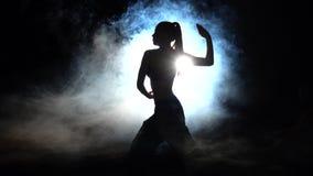 Kraftig utbildningskarate _ silhouette Panelljus arkivfilmer