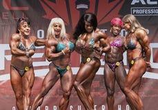 Kraftiga muskelkvinnor Posedown på Toronto 2018 pro-Supershow Arkivbilder