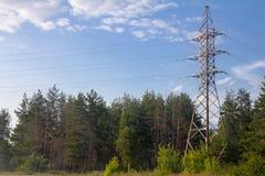 Kraftledning i natur Fotografering för Bildbyråer