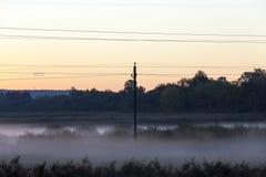 Kraftledning morgon Arkivbild