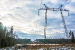 Kraftledning som leder till och med en skog royaltyfri fotografi