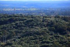 Kraftledningar i flyg- sikt för skoglandskap Arkivbilder
