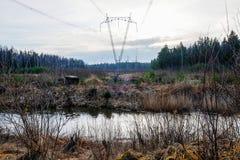 Kraftledningar i skogen Royaltyfri Bild
