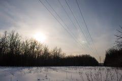 Kraftledningar, solnedgång och skog royaltyfri foto