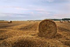 Kraj beli boczna słomiana sceneria Obrazy Royalty Free