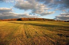 Kraj po jesieni havest Zdjęcie Stock
