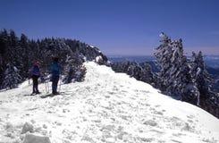 kraj przecinające narciarzy Fotografia Stock