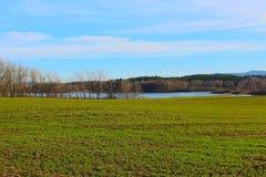 Krajobraz świeża trawa Obraz Royalty Free
