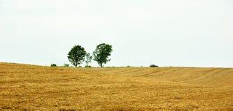 krajobraz Obrazy Royalty Free