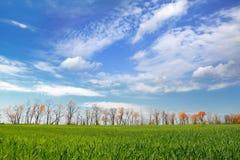 krajobraz Fotografia Stock
