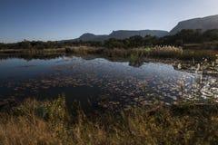 krajobraz afryki Obraz Royalty Free