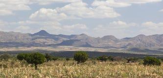 krajobraz afryki Omo dolina Etiopia Zdjęcie Stock