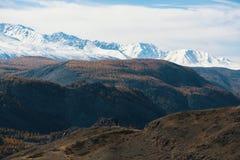 Krajobraz Altai góry Altai republika Zdjęcie Royalty Free