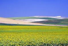 krajobraz andaluzji Zdjęcie Stock