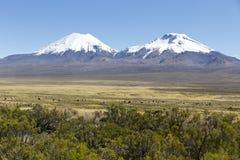 Krajobraz Andes góry z lam pasać, Zdjęcia Stock