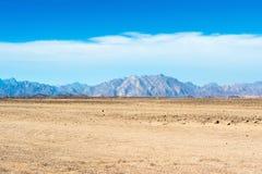 Krajobraz Arabska pustynia Zdjęcia Royalty Free
